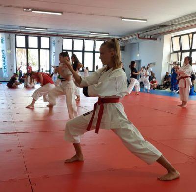 """Karate Do Trieste in mezzo ai... """"mostri sacri"""" a Ostia"""